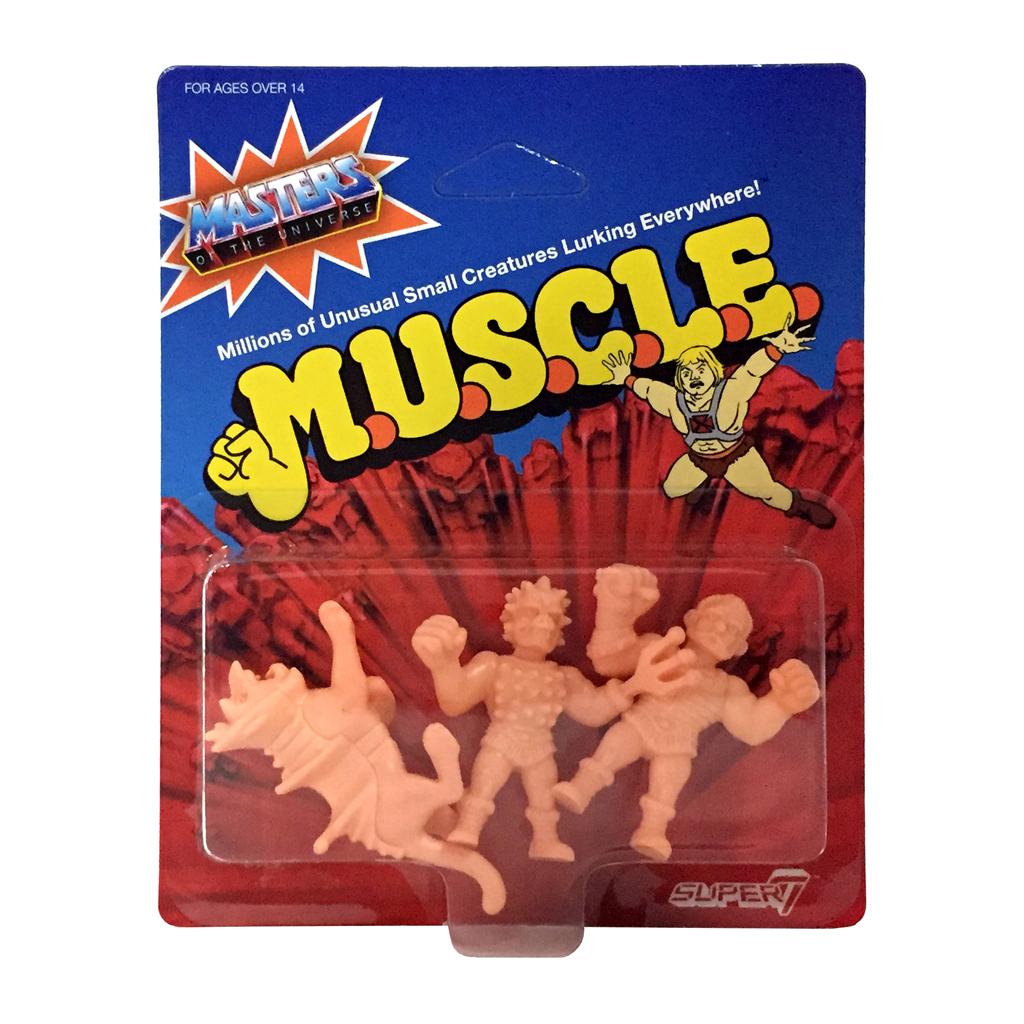 motu_muscle_wv2_B